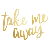 Take Me Away de Paige Evans