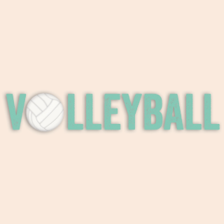 Volleyball de Simple Stories
