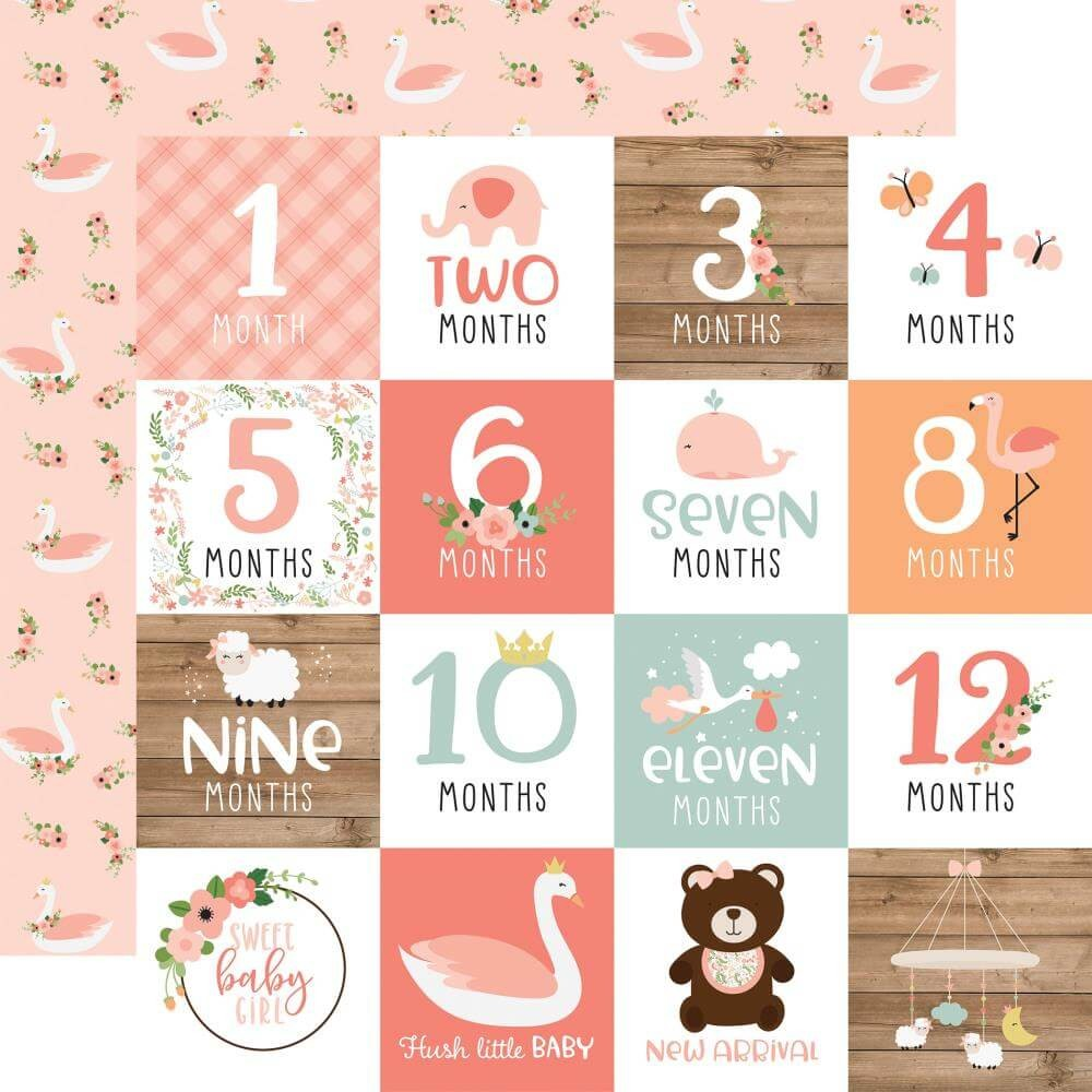 Papel Estampado Doble Cara 12x12 Baby Girl Milestone Cards