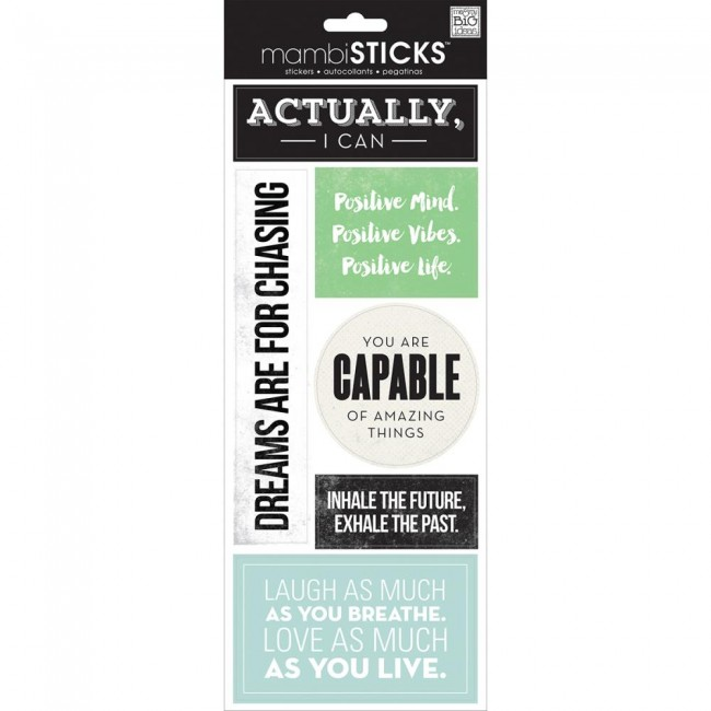 Actually I Can Sayings Stickers