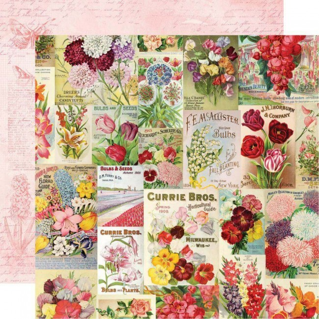 Papel Estampado Doble Cara 12x12 Simple Vintage Botanicals Scatter Kindness