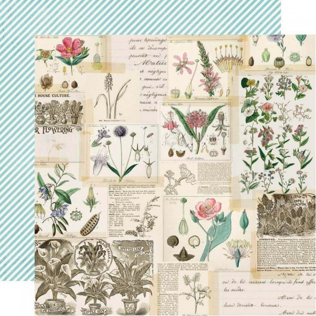 Papel Estampado Doble Cara 12x12 Simple Vintage Botanicals Collect Moments
