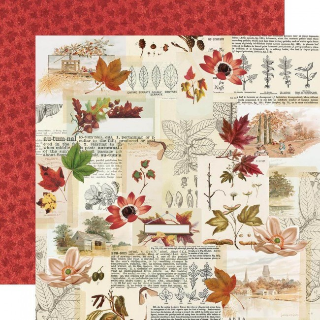 Papel Estampado Doble Cara 12x12 Autumn Splendor Grateful Hearts