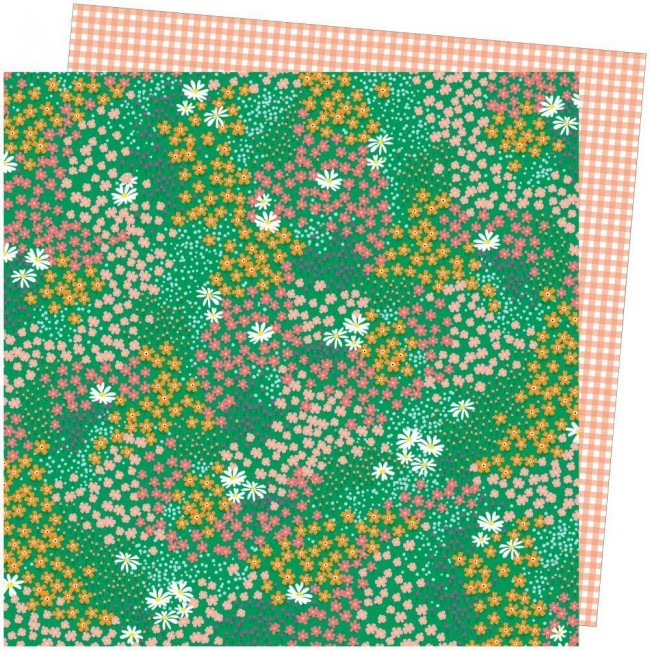 Papel Estampado Doble Cara 12x12 Picnic In The Park Amy Tangerine Pretty Patches
