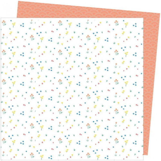 Papel Estampado Doble Cara 12x12 Picnic In The Park Amy Tangerine Dainty Dots