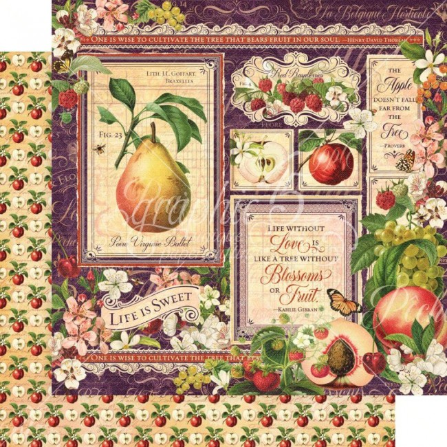 Papel Estampado Doble Cara 12x12 Fruit & Flora Fruit & Flora