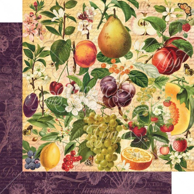Papel Estampado Doble Cara 12x12 Fruit & Flora Nature's Bounty