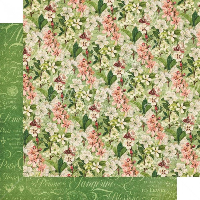 Papel Estampado Doble Cara 12x12 Fruit & Flora Fragrant Blossoms