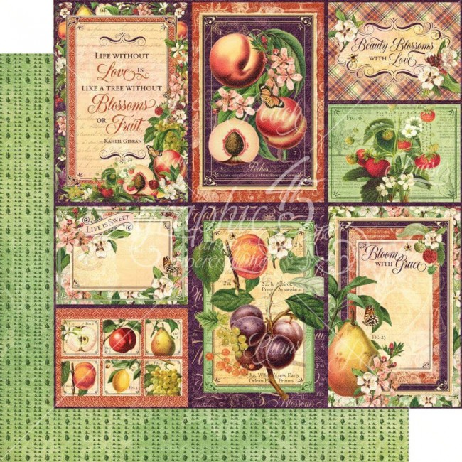 Papel Estampado Doble Cara 12x12 Fruit & Flora Orchard Fresh