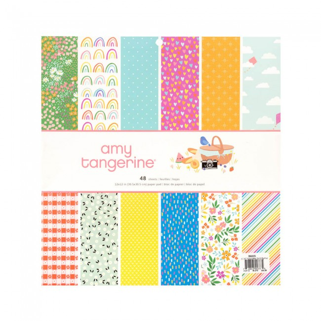 Stack Papeles Estampados 12x12 Una cara Picnic In The Park Amy Tangerine