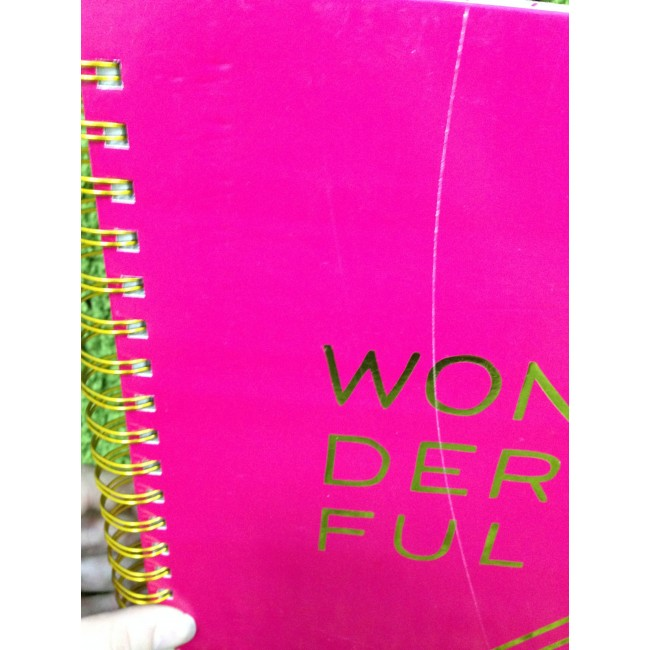 #Wonderful Journal Desktop Essentials# TARA