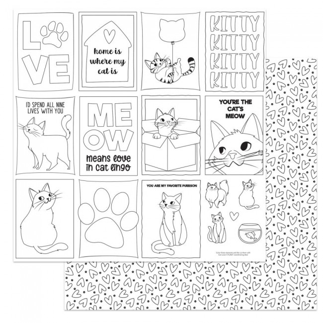 Papel Estampado Doble Cara 12x12 Cat Lover Color Me