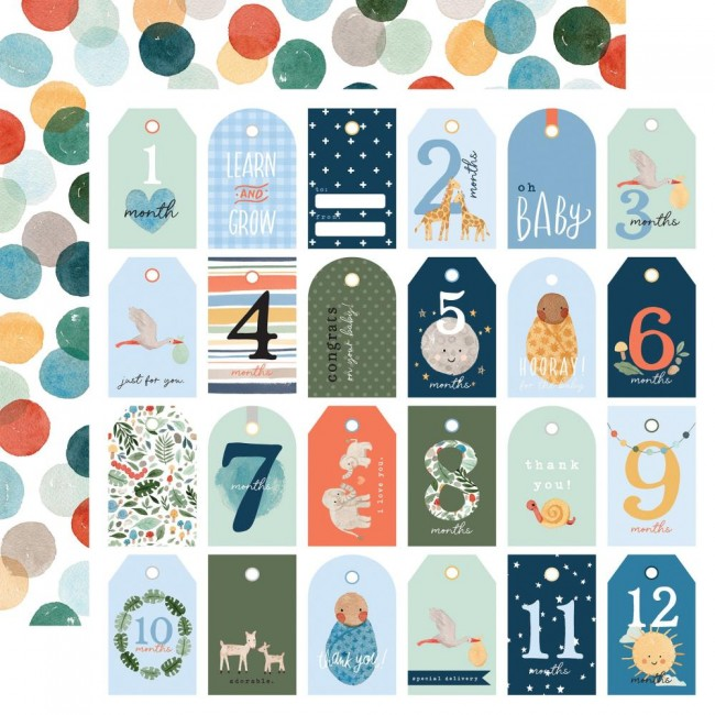 Papel Estampado Doble Cara 12x12 Welcome Baby Boy Boy Tags