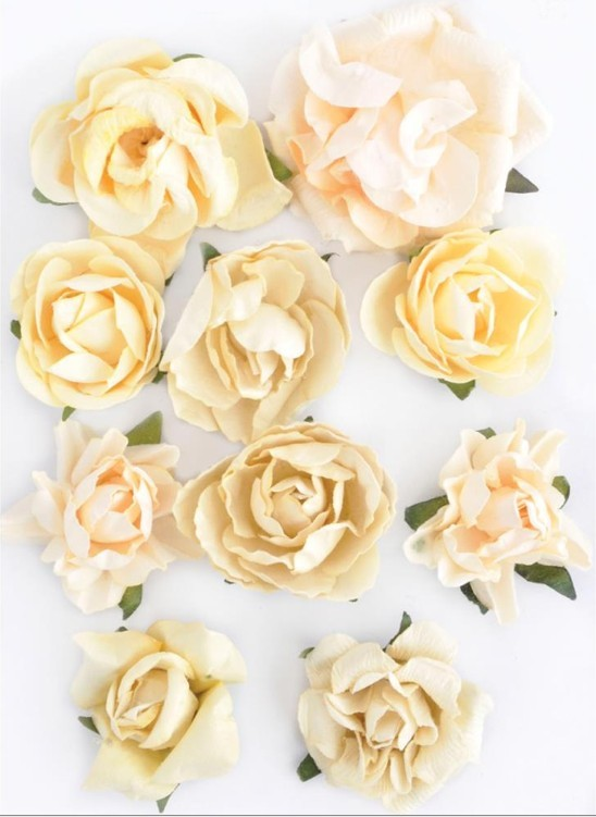 Flores de papel Blooms Buttercream