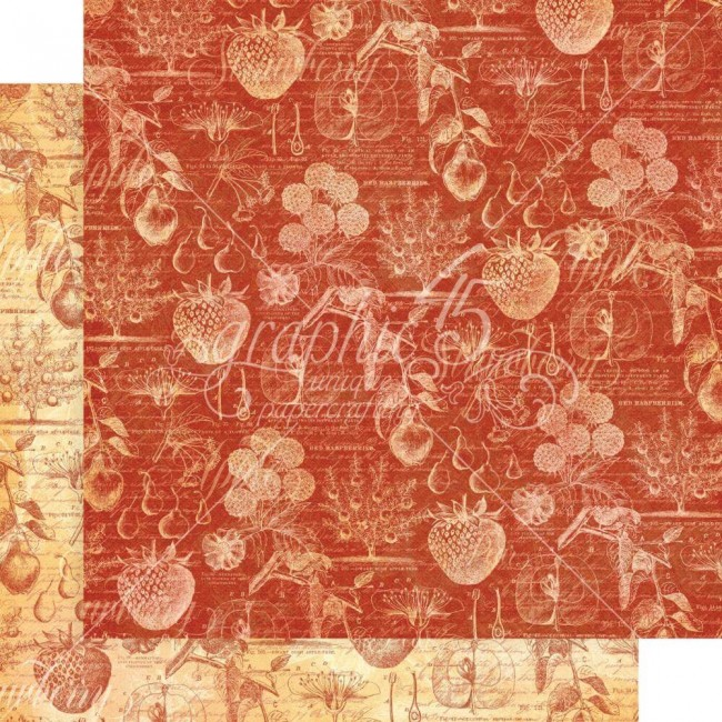 Papel Estampado Doble Cara 12x12 Fruit & Flora Botanical Beauties