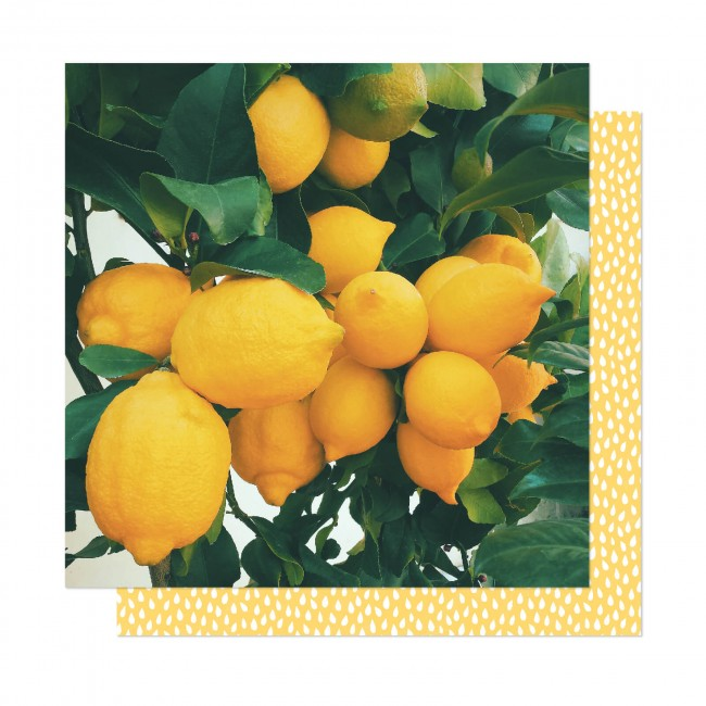 Papel Estampado Doble Cara 12x12 It's All Good Lemon Drop