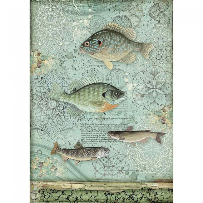 Papel de arroz decoupage A4 Forest Cristina Radovan Fish