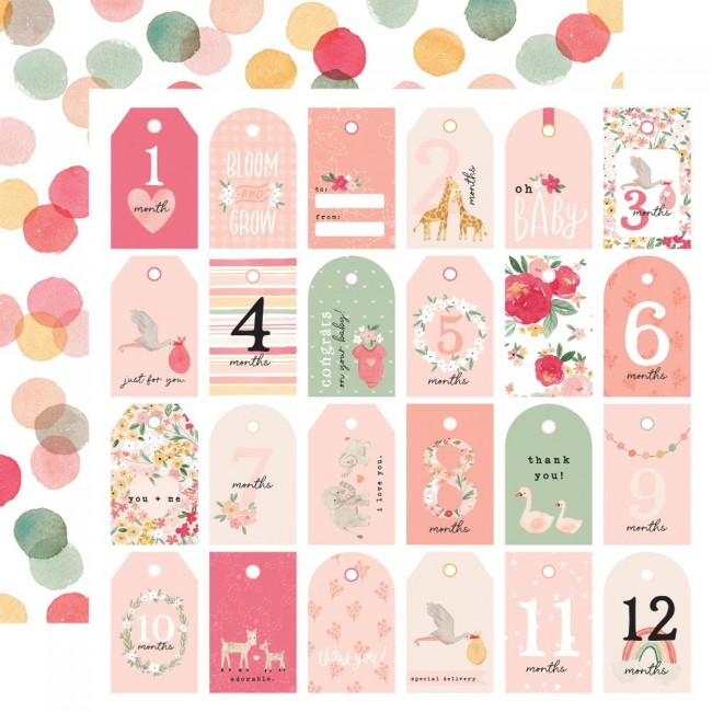 Papel Estampado Doble Cara 12x12 Welcome Baby Girl Girl Tags