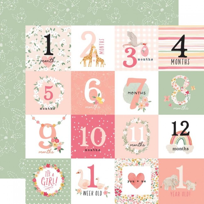Papel Estampado Doble Cara 12x12 Welcome Baby Girl Milestone Journaling Cards