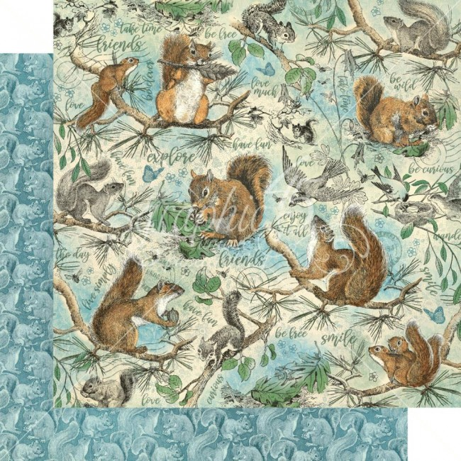 Papel Estampado Doble Cara 12x12 Woodland Friends Be Curious