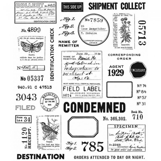 Tampon en Caoutchouc 7x8,5 Field Notes Tim Holtz