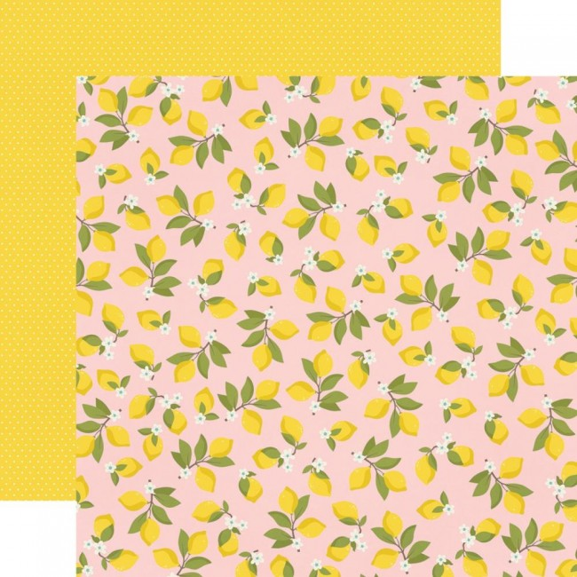 Papier Imprimé Recto-verso 12x12 Summer Farmhouse Easy Peasy