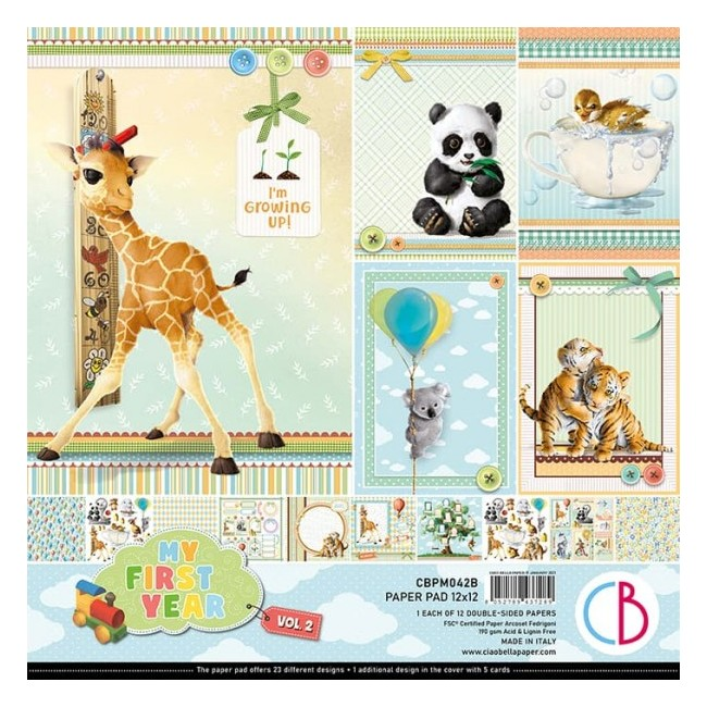Stack Papiers Imprimés 12x12 My First Year Vol.2