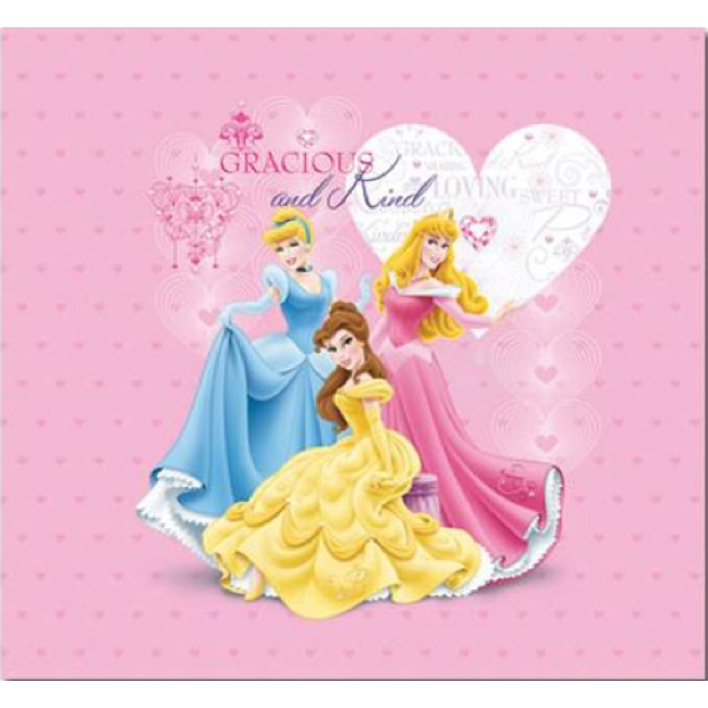 Album 12x12 Princesses Disney